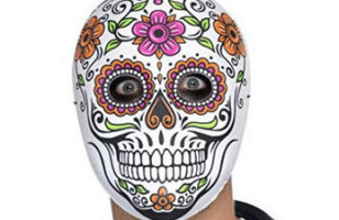 Halloween Mens Costume Day of the Dead Face Mask