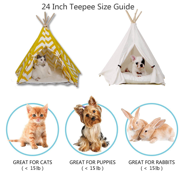 Portable Pet Tents