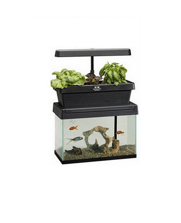 An Innovative Gardening Tool With Aquarium
