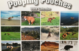 Pooping Dogs Calendar!!! Ohh  Yuck!