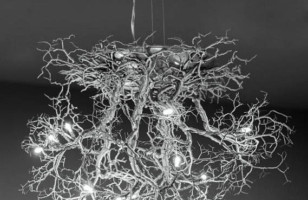 Tree Roots Ceiling Lamp