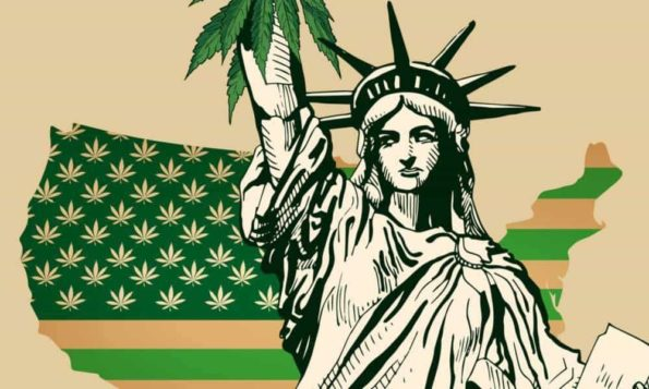 The Status of Cannabis Legalization in the United States