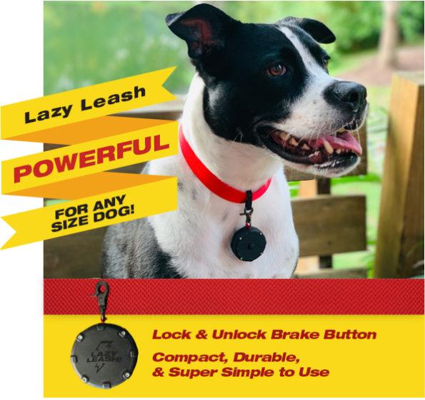 Lazy Leash!
