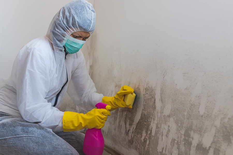 What are the benefits of painting your house?