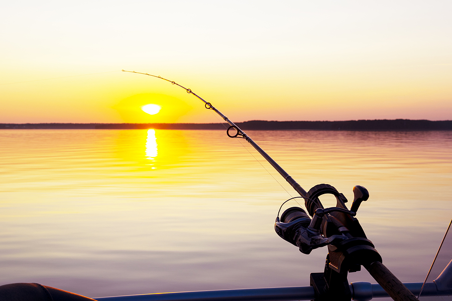 The Angler's Handbook: 10 Tips to Prepare You For Your Next Fishing Trip