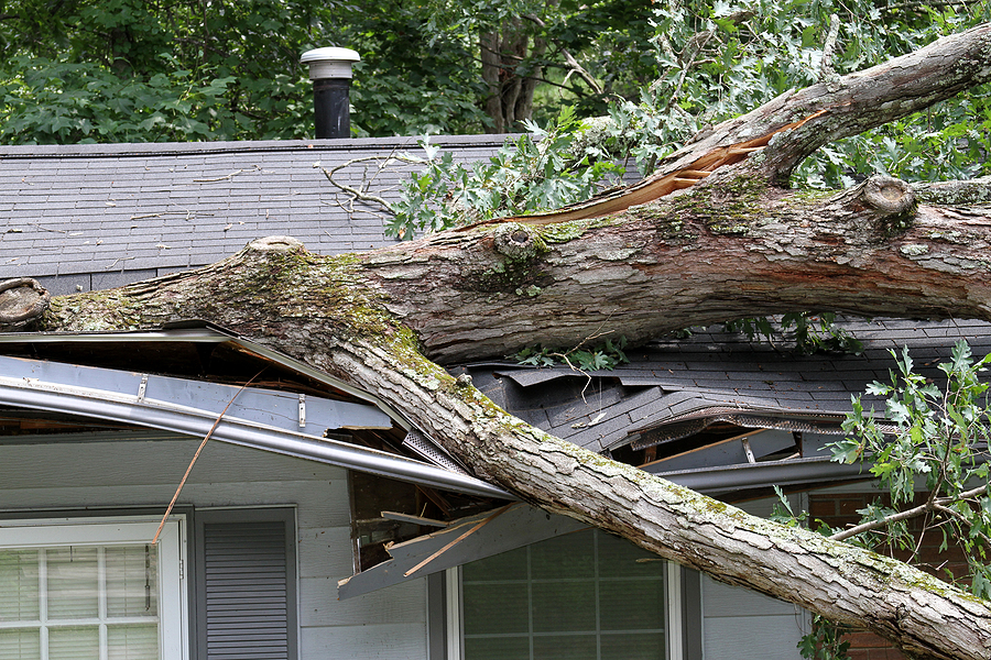 3 Questions to Ask When You Make a Home Insurance Claim