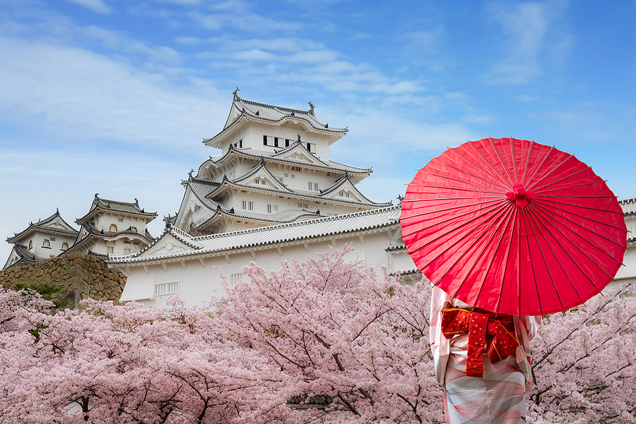 5 reasons why Japan is a country that is definitely worth a visit