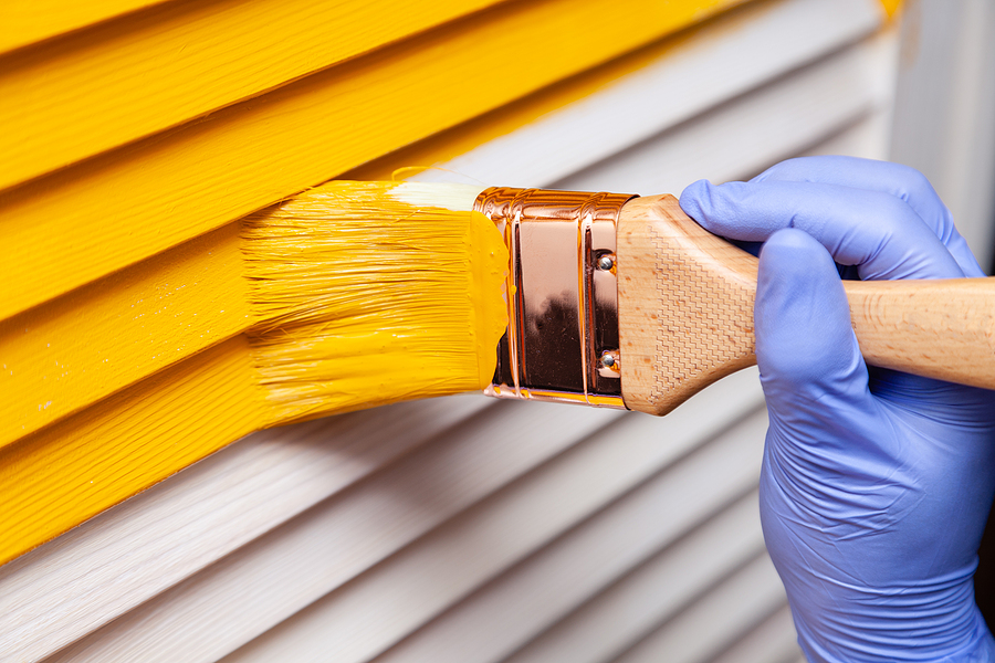 Are You Looking to Paint Your House? Here Are Your Paint Choices