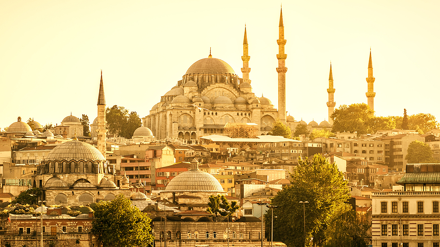 The Real Reason Behind the Rise of Medical Tourism in Istanbul