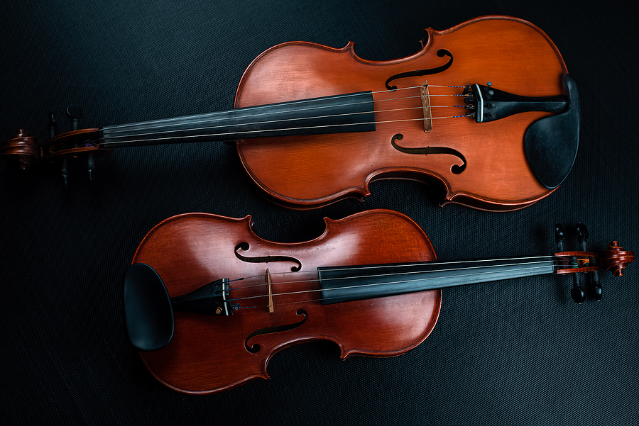 Why Violin Classes Are More Popular Than Viola Lessons