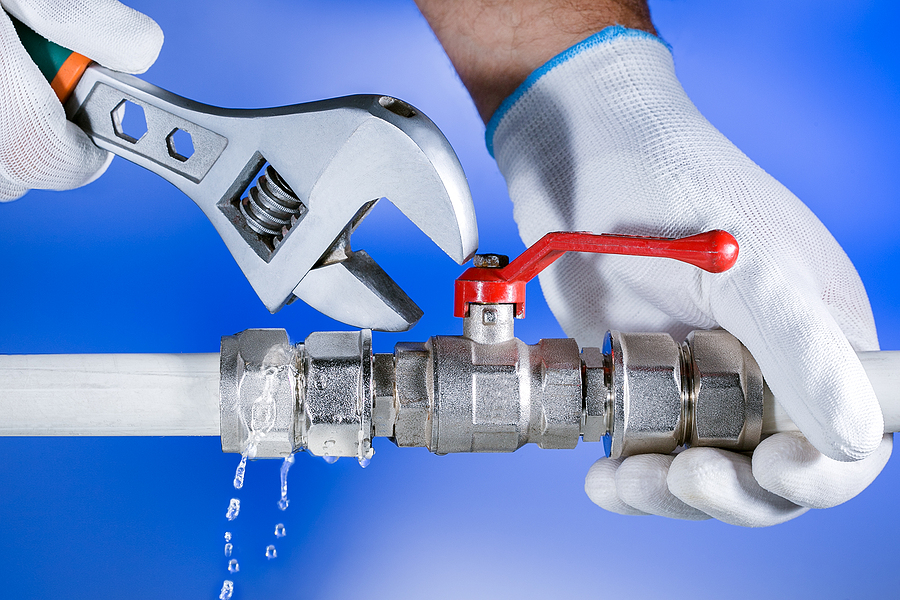 What Category of Products and Services Does Victoria Plumbing?