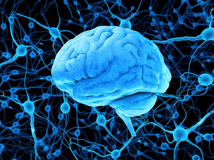 A Better Understanding of How Brain Sensors Work