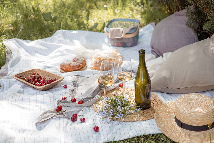 Features to consider before choosing a picnic basket
