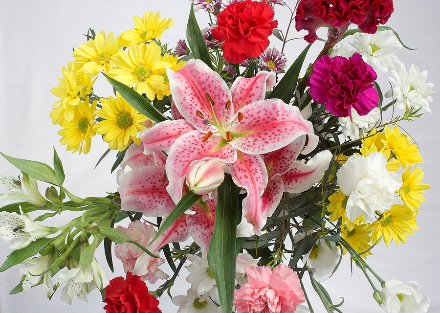 Best Flowers to Send for Different Occasions