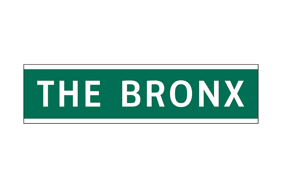 Visiting the Bronx