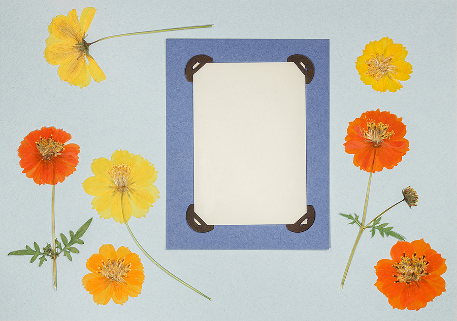 Interested In Scrapbooking? Follow These 7 Simple Steps