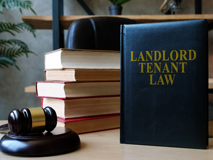 Ottawa Landlord Tenant Board: Steer Your Career As a Young But Professional Lawyer