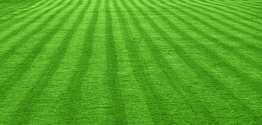 Important Steps To Take If You Want To Have A Beautiful Lawn