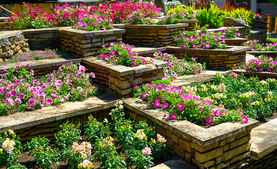 Amazingly Aromatic Flowers That Can Enhance Your Garden Scent