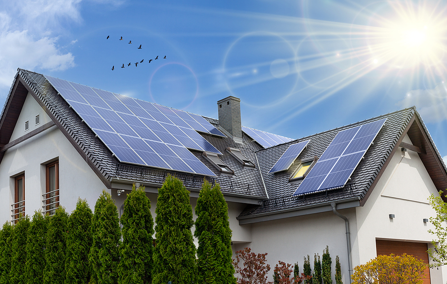 An Overview of the Types of Solar Company, Their Benefits, and Services