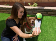 A Simple Phone Attachment Helps You Take The Best Dog Selfie