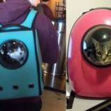 Astronaut Pet Carrier