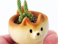 This Etsy Shop Sells The Cutest Shiba Inu Planters Ever