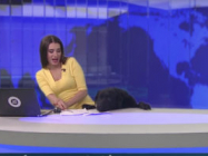 A Dog Crashes The News And Scares The Hell Out The Reporter