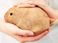 The Cutest Bunny Handbag In The History Of Bunny Handbags
