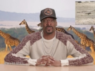 You Have To Watch As Snoop Dogg Narrates Iguana vs. Snakes
