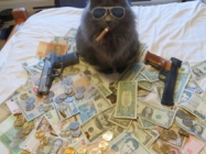 Caption This: Cash Cat [Closed]