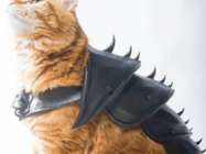 This 3-D Printed Cat Armor Prepares Your Kitty For Battle