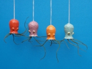 These Jellyfish, Octo, & Squid Air Plant Holders Are SO CUTE