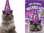 Oh, Just An Inflatable Wizard Hat For Cats! No Big Deal