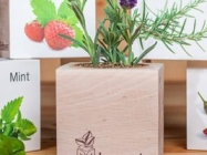 Pre-Seeded Organic Wood Planters: EcoCubes