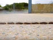 A Timelapse Of Caterpillars Walking Is Mesmerizing AF
