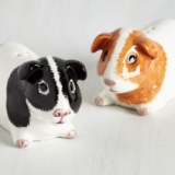 Guinea Pig Salt & Pepper Shakers