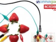 UncommonGoods Makey Makey Challenge