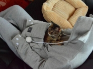 A Hoodie Equipped With A Cat-Sized Pocket For Kitty Snugs