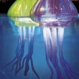 Floating LED Jellyfish
