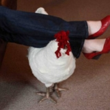 Chicken Footstools