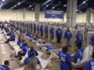 The Human Mattress Dominoes World Record Has Been Broken