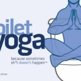 Toilet Yoga