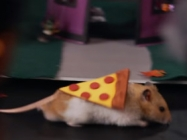 Tiny Hamster Has A Tiny Halloween And It's Cute AF