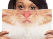 The Cat Beard Notebook