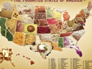 The Foodnited States Of America