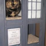 TARDIS Cat Condo
