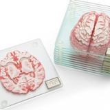 Brain Coasters