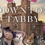 Downton Tabby Book