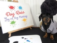 Watch Dog Ross Teach You The Joy of Dog Painting
